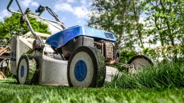 Achieve a Lush and Gorgeous Lawn1