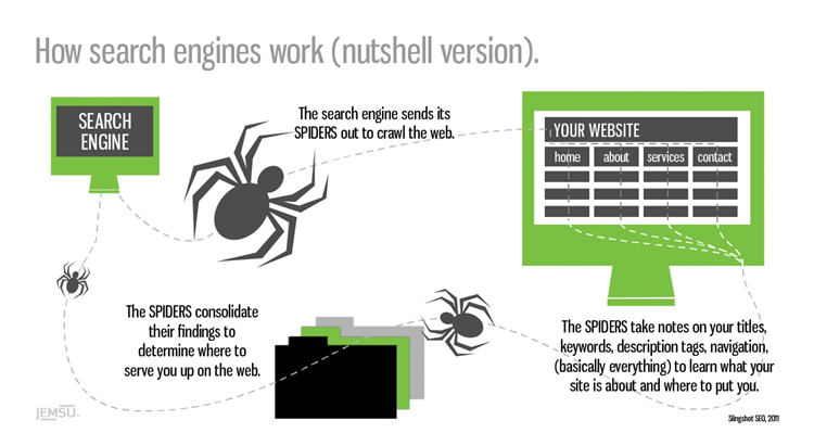 How Search engine work