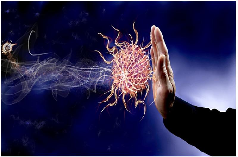 Moringa fights inflammation