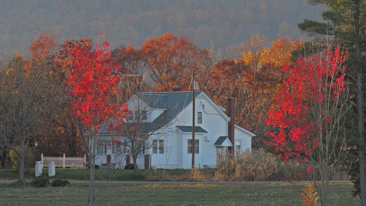 Roof in Fall Season
