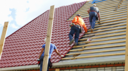 Tile Roofing - Feature