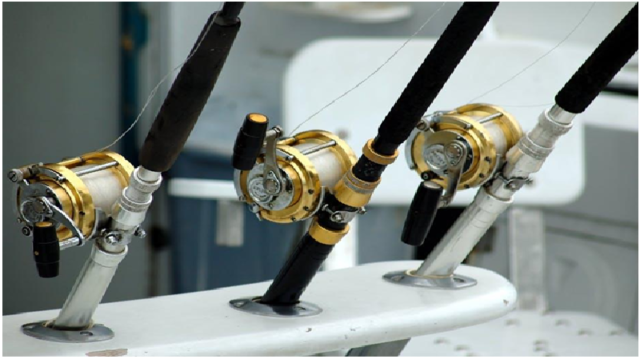 Fishing rod brand