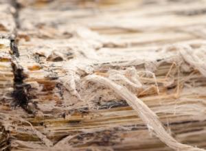 Asbestos Found