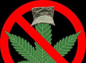 Cannabis Control Law In Canada