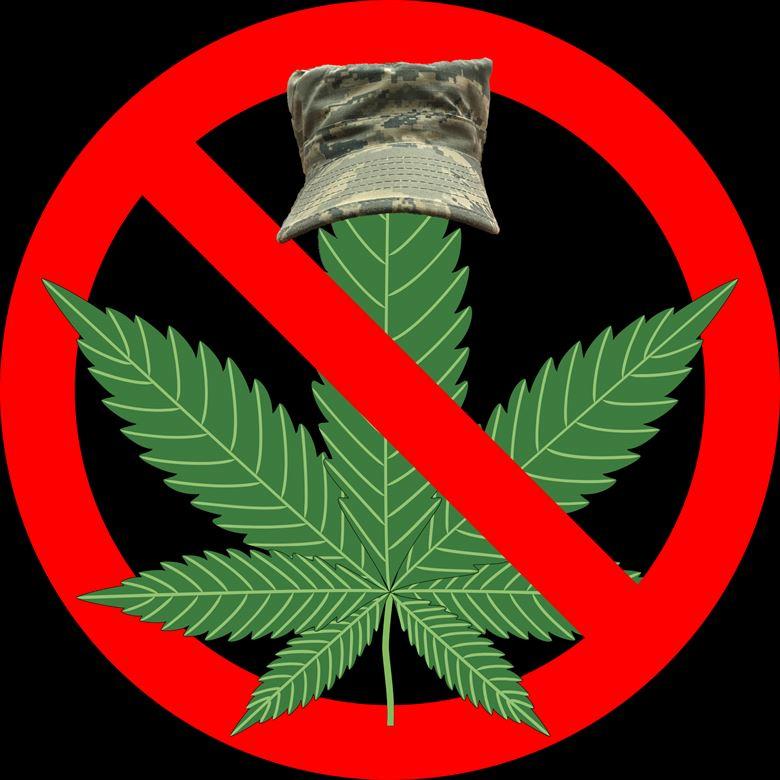 Марихуана зло правда о марихуане скачать фильм торрент