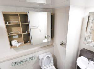 Toilet Clogging