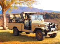 Safari Trams
